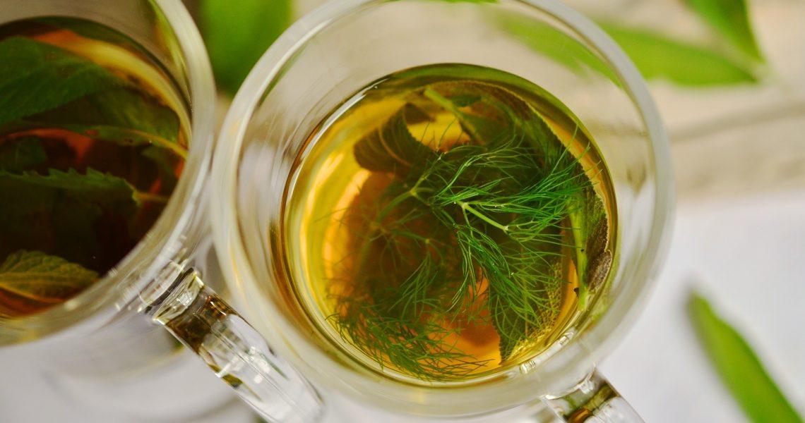 herbal-tea-1410584_1920