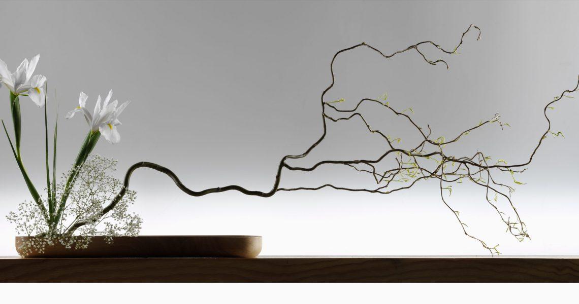 Wide,Screen,Japanese,Ikebana